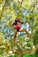HEELS TREE